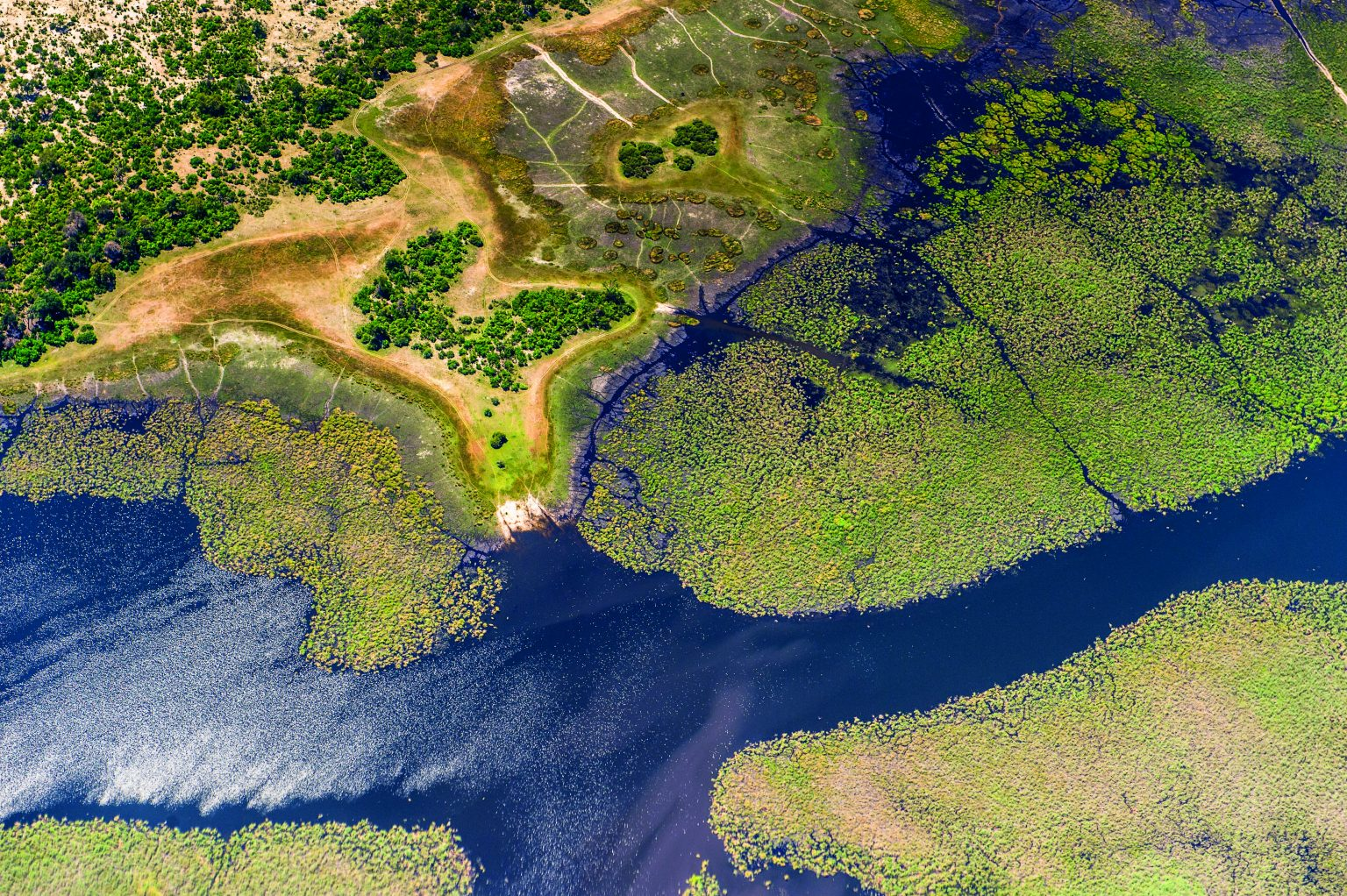 New fund targets long-term protection of the Cubango-Okavango River Basin